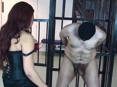 Very Hot model mistress ballbusting lucky slave