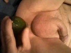 vegetable - cucchini 1