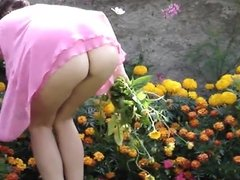 Mature in the garden