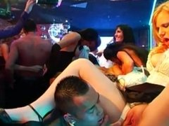 Sexy babes fucking at a bride sex party