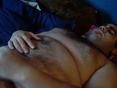 chubby hairy bear cumming