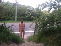 public nudity and flashing traffic