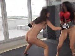 KO - Queensnake vs Tanita - Queensnake.com, Queensect.com