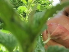 extrem outdoor nettle cumshot in slow motion