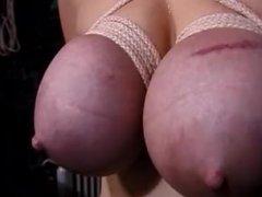 Extreme Tit Torture 1 bdsm (no tag for bdsm so chose big tits!)