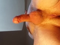 Pulsating cock- 20 contractions - filmed from bottom