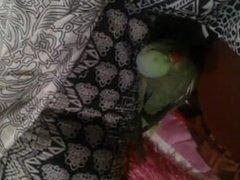 Paki GF Kashish playing with Parrot