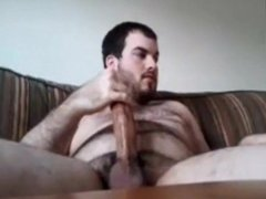 Bear big dicked 16817