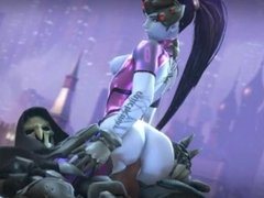 OVERWATCH:THE DEFINITIVE WIDOWMAKER COLLECTION