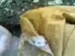 indian gf bf sex in jungle