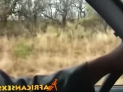 Sweet African babe sucking white cock in the car on the safari