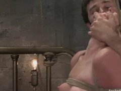 Bound dipshit cunt Ami Emerson gets rough fucked and slapped