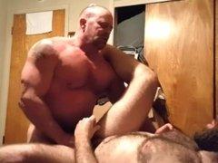 2 Big Bears enjoy each other