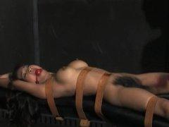 perfect slave lesbian
