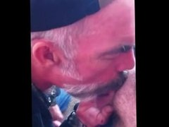 Daddy bear blowing a guy and cumming