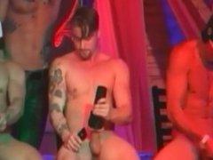 Strippers pau duro XIII