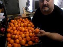 Sensual calvo gordo de mierda enseña naranjas para meterselas en el culo