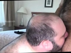 Muscle Bear Fucks Chubby Bear
