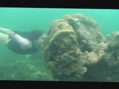 bikini and nude babes breathholding swimming underwater