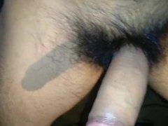 pico peludo chileno