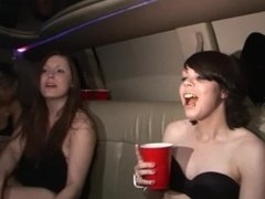 wild fucking party girls in and out of the club including sister naked limo