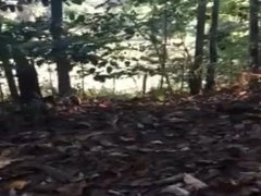 Teen boy jerks off in the woods near a road