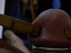 Cock torture with pegs 2