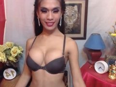 Hot Ladyboy Camming