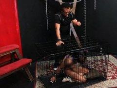Caged ebony slave Harmonys candle wax punishment and black
