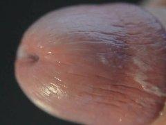 close up cum
