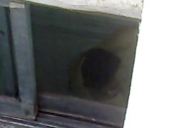 spy on persian woman in bathroom
