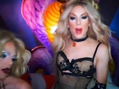 Hot dragqueens born to be shemale pornstars