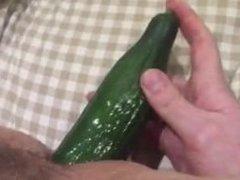Anal cucumber play