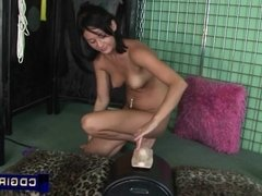 Brunette beauty is introduced to Sybian pleasures