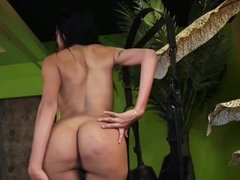 sexy Tgirl get fucked