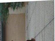 Exhibe sur terrasse devant les fenetres des voisins
