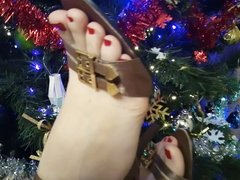 X HAMSTER Lady L HH 1 : sexy gold sandals.