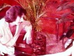 Hot Retro Redhead gets fucked by Mustache Dude Vintage loop
