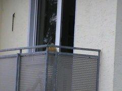 neighbour sunbathing on balcony